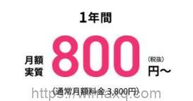 フェイサム 800円